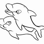 Kolorowanka delfiny