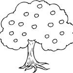 Kolorowanka drzewo