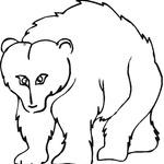 Kolorowanka grizzli