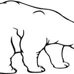 Kolorowanka Niedźwiedź