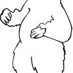 Kolorowanka niedźwiedzie