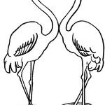 Kolorowanka flamingi