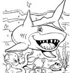 Kolorowanka rekin