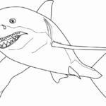 Kolorowanka rekiny