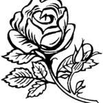Kolorowanka róża