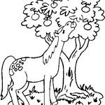 Kolorowanka z koniem
