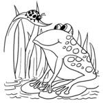 Kolorowanka z żabą
