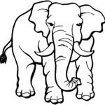 Kolorowanka ze słoniem
