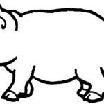 Kolorowanka ze świnia
