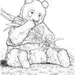 Malowanka panda